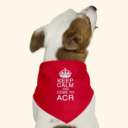 keep calm - Bandana per cani