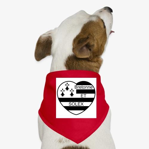 bretonne - Bandana pour chien