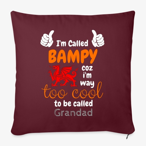 I'm Called BAMPY - Cool Range - Sofa pillow with filling 45cm x 45cm
