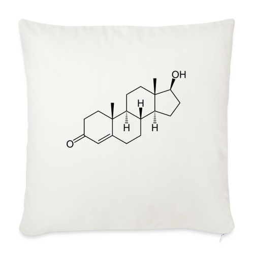 Testosterone - Sofa pillow with filling 45cm x 45cm
