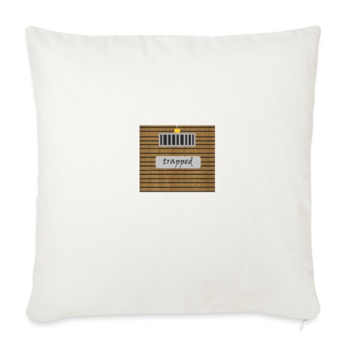 Locked box - Sofa pillow with filling 45cm x 45cm