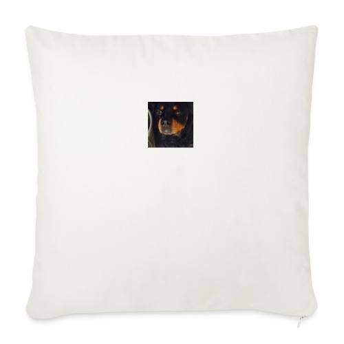 hoodie - Sofa pillow with filling 45cm x 45cm