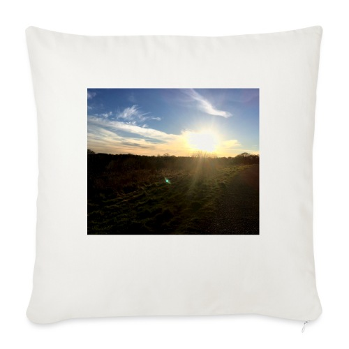 Image - Sofa pillow with filling 45cm x 45cm