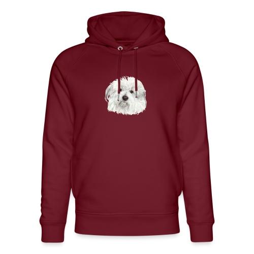 coton-de-tulear - Stanley & Stella unisex hoodie af økologisk bomuld