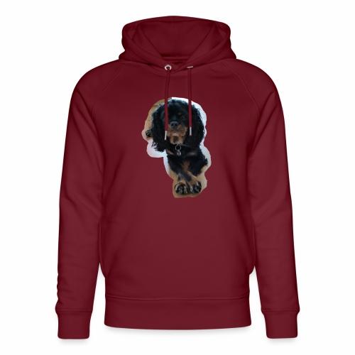 Ben Merchandise - Unisex Organic Hoodie by Stanley & Stella