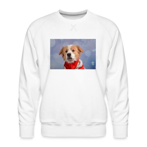 DSC_2040-jpg - Mannen premium sweater