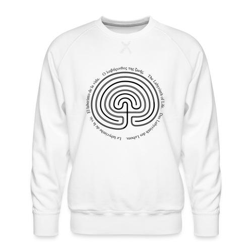 Labyrinth thio - Männer Premium Pullover