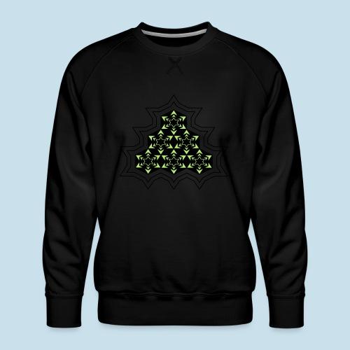 Stern - Männer Premium Pullover
