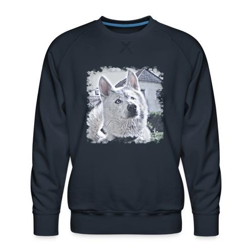 Pass auf - Männer Premium Pullover