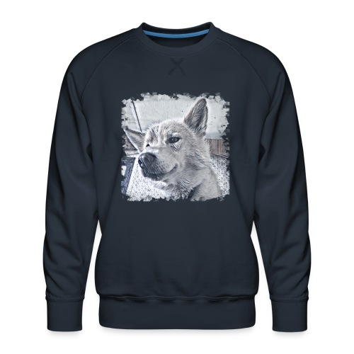 Flash - Männer Premium Pullover