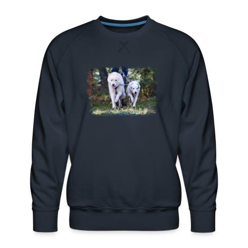 ...and Go - Männer Premium Pullover