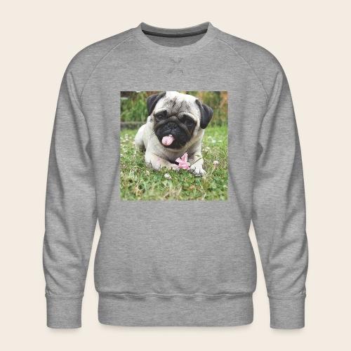 Mops Wiese - Männer Premium Pullover