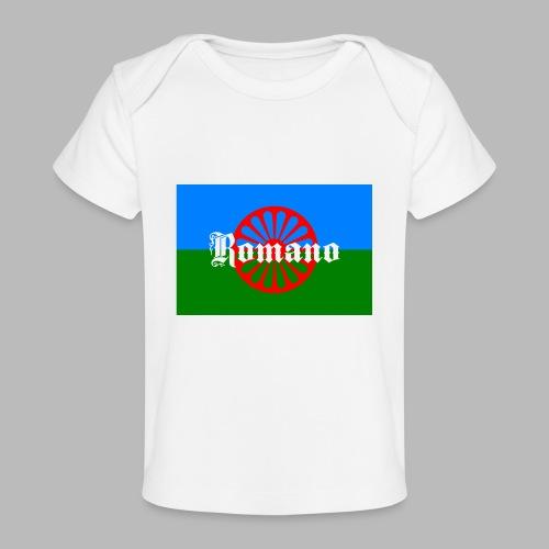 Flag of the Romanilenny people svg - Ekologisk T-shirt baby