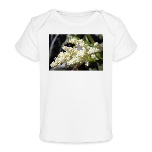 Perhonen raparperin kukalla - Vauvojen luomu-t-paita