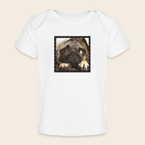 Mops Hund 1 - Baby Bio-T-Shirt