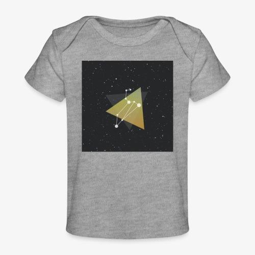 4541675080397111067 - Organic Baby T-Shirt