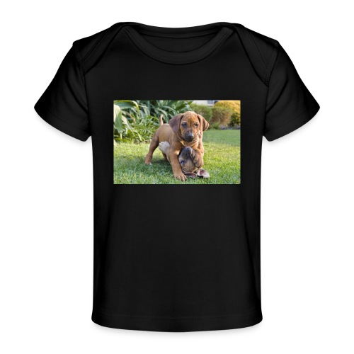 adorable puppies - Organic Baby T-Shirt