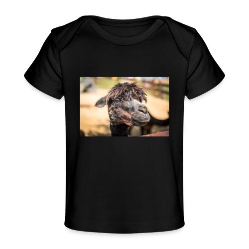 Zobori Erlebnispark in Zalaszabar [2] - Baby Bio-T-Shirt