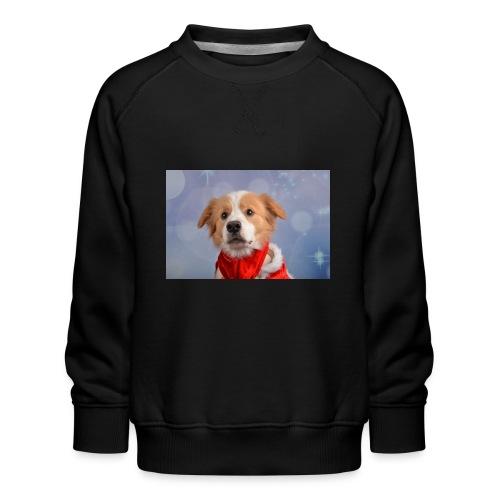 DSC_2040-jpg - Kinderen premium sweater