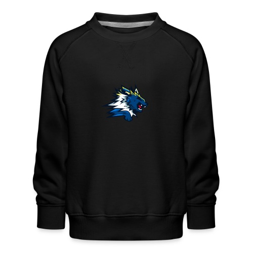 flying dealgles - Børne premium sweatshirt