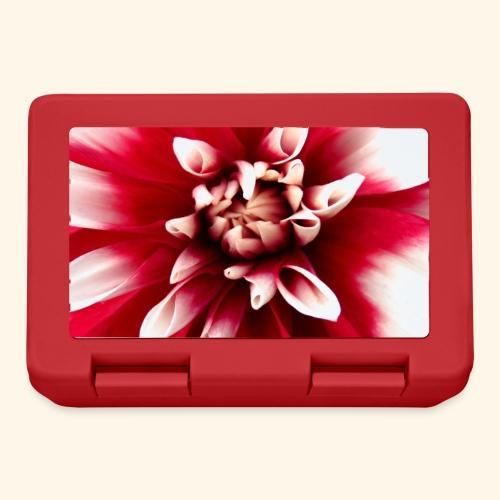 Dahlienblüte, Blume, Blüte, foral, blumig, Blumen - Brotdose