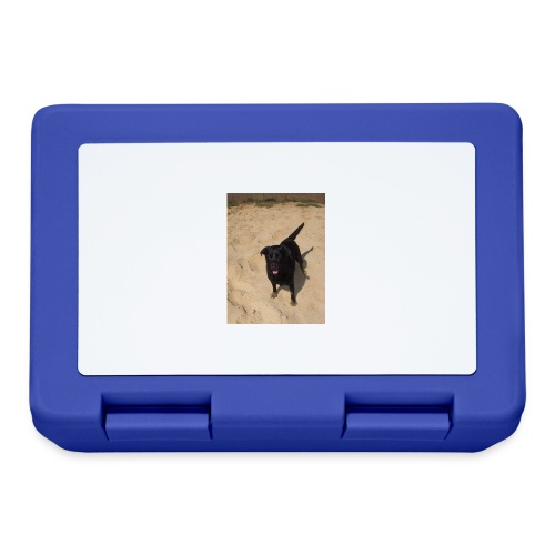 Sandpfoten - Lunchbox