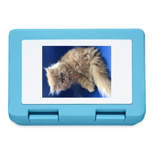 IMG 8771 - Lunch box