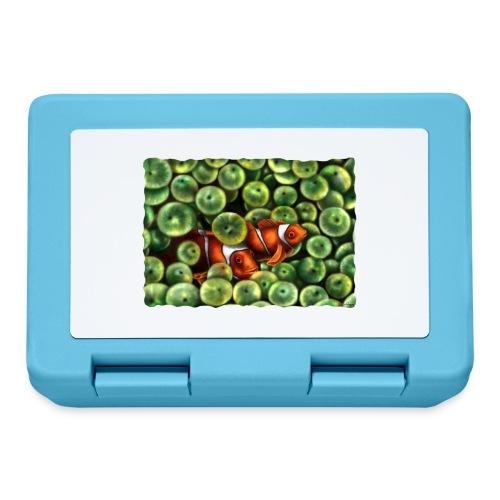 Pesci Pagliaccio - Lunch box