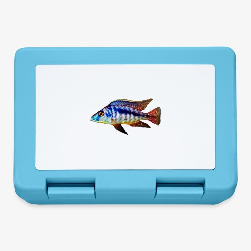MIXED AFRICAN CICHLIDS - Lunchbox