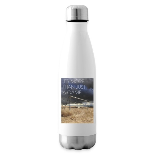 more - Insulated Water Bottle