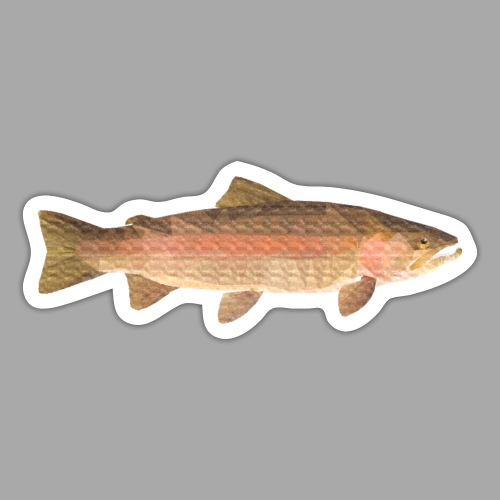 low-polygon-trout art.png - Tarra
