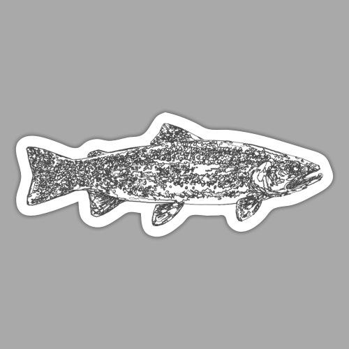 art trout.png - Tarra