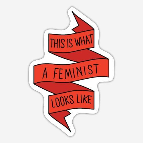 This is a feminist - Klistermärke