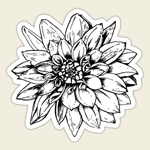 Dahlie schwarz - Sticker