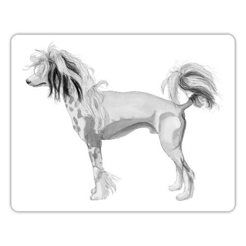 chinese crested Dog sticker - Sticker