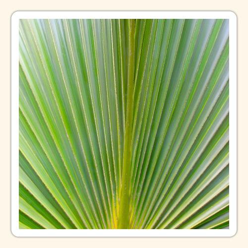 Blatt einer Palme auf einer Insel in der Karibik - Sticker