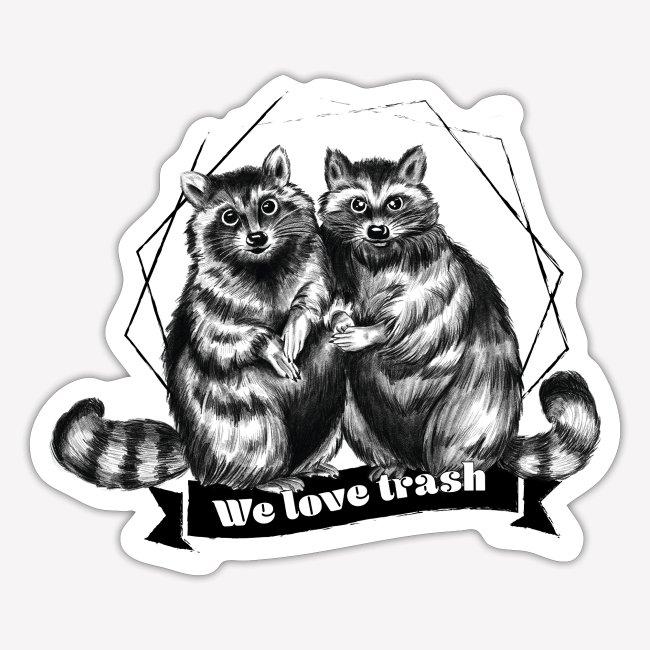 Raccoon – We love trash