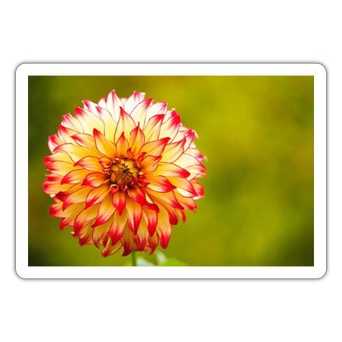 Blomst - Sticker