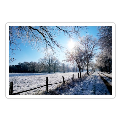 Scherenbostel im Schnee - Sticker