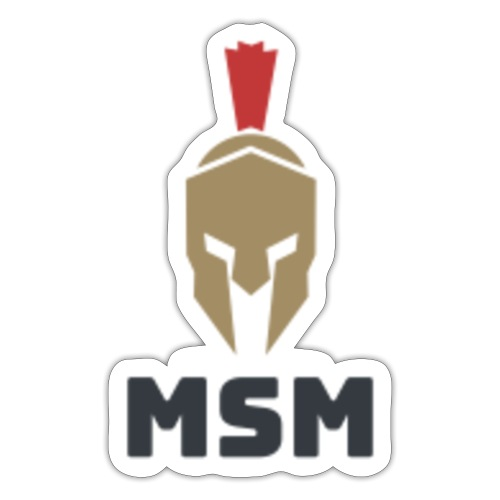 MSM Warrior - Sticker