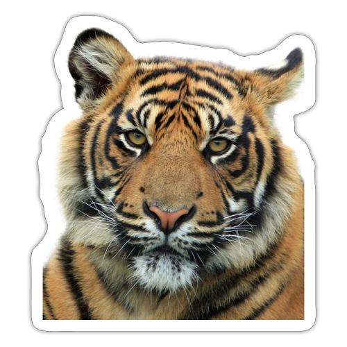tiger 714380 - Adesivo
