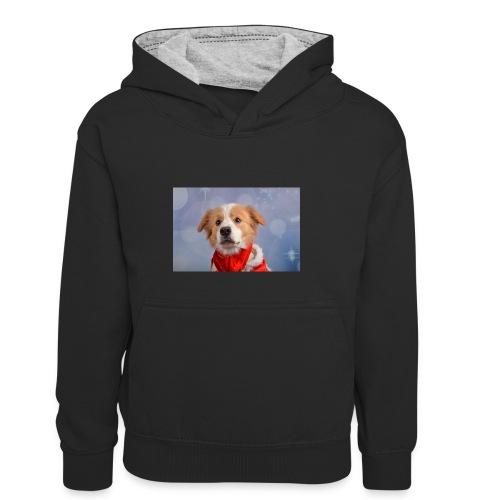 DSC_2040-jpg - Teenager contrast-hoodie/kinderen contrast-hoodie