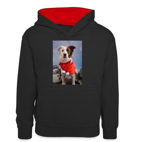 DSC_2058-jpg - Teenager contrast-hoodie