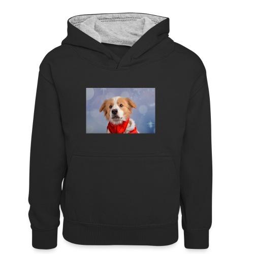 DSC_2040-jpg - Teenager contrast-hoodie