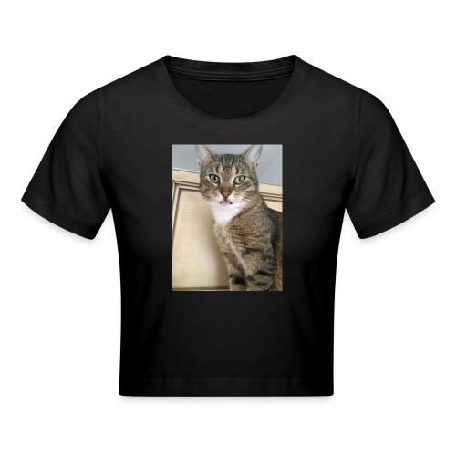 Kotek - Krótka koszulka