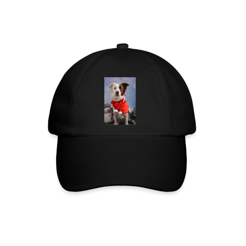 DSC_2058-jpg - Baseballcap