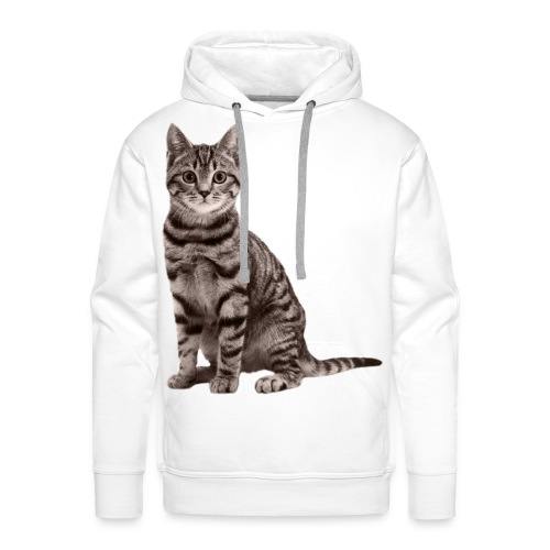 Cute cats (full set) - Men's Premium Hoodie