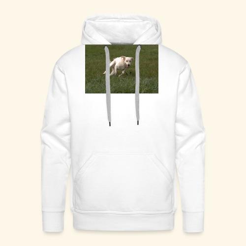 Zen cours - Sweat-shirt à capuche Premium pour hommes