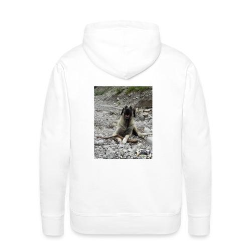 Hoodie Kangal im Flußbett - Männer Premium Hoodie