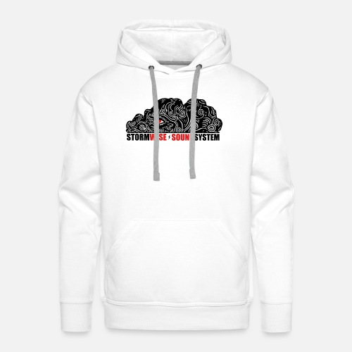 stormwise logo rectangle - Sweat-shirt à capuche Premium pour hommes